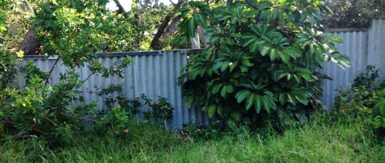 Brisbane Demolition Companies – B E Plant Hire Brisbane